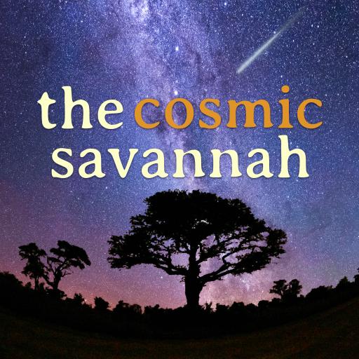 Logo for The Cosmic Savannah