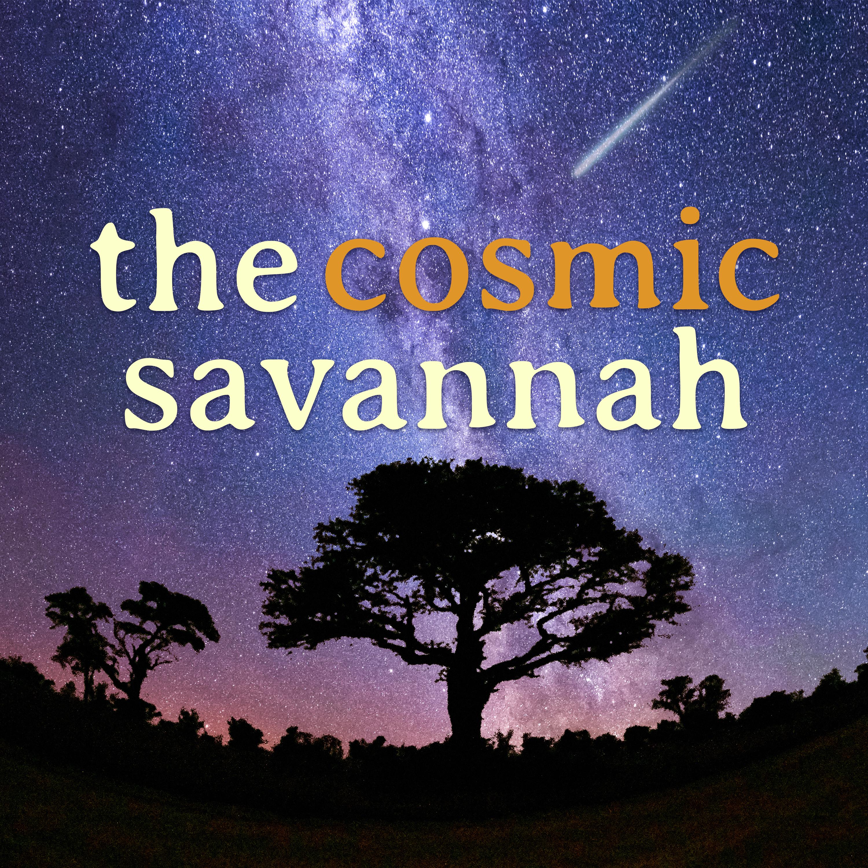 The Cosmic Savannah